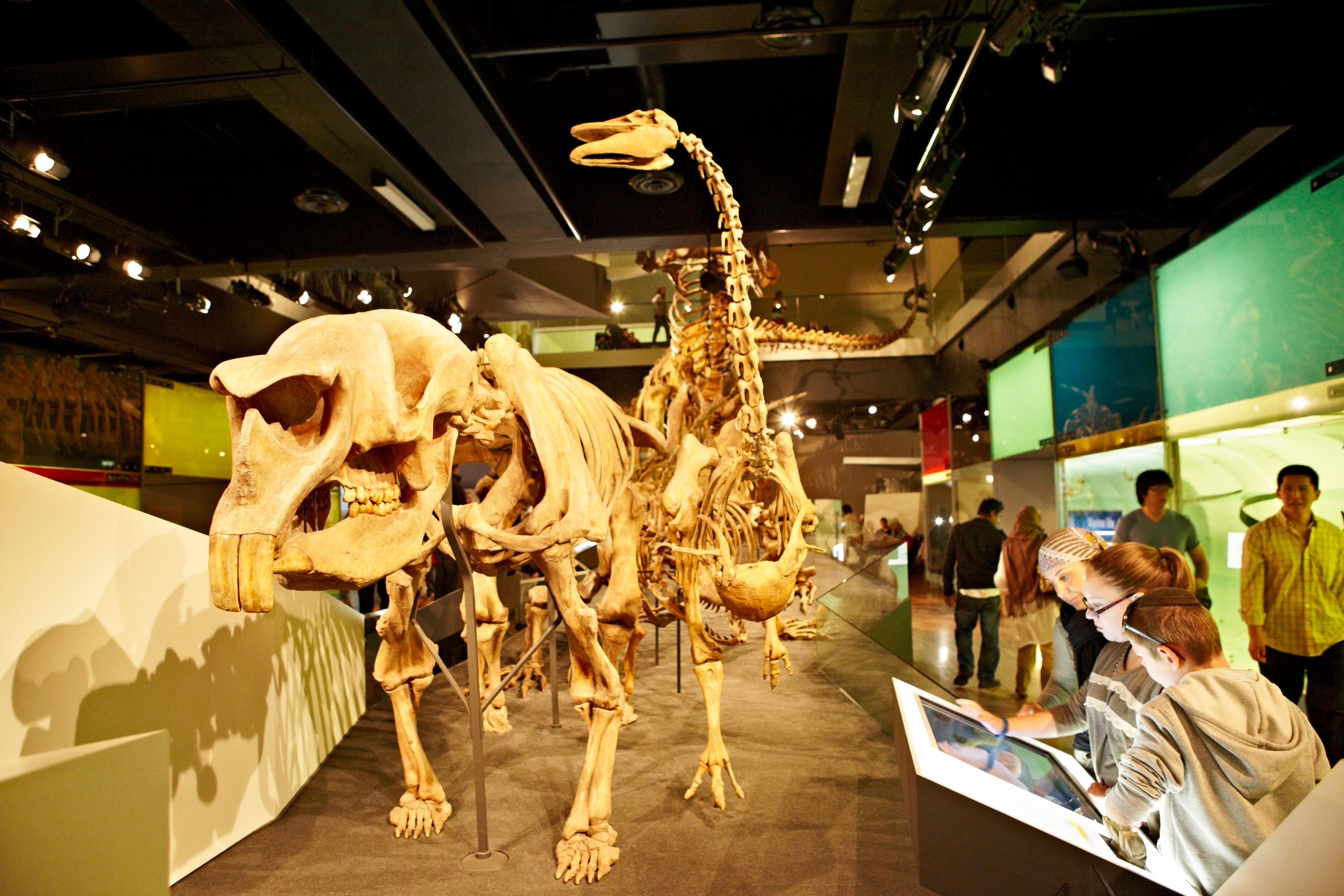 Museos con Realidad Aumentada