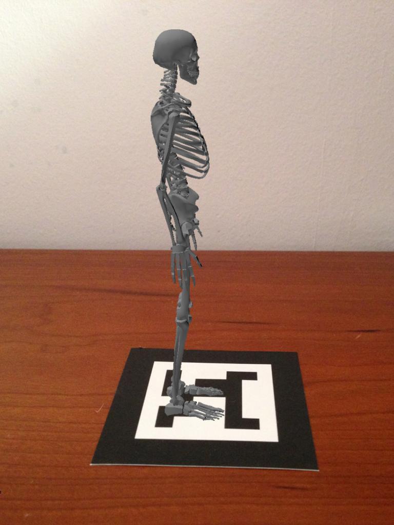Realidad Aumentada esqueleto